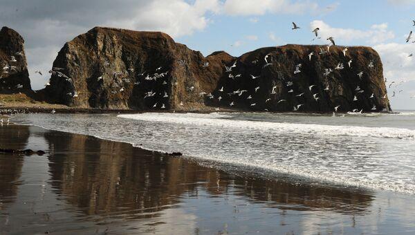 Берег моря на острове Кунашир. Архивное фото