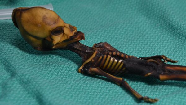 Атакамский гуманоид, найденный в 2003 году в пустыне в Перу