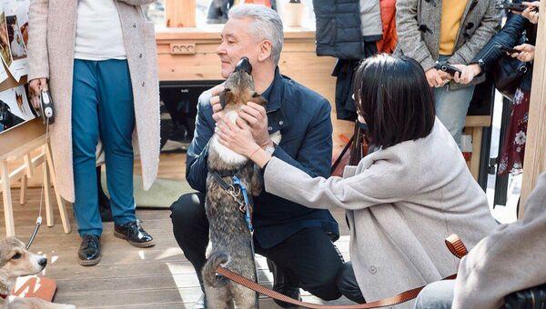 Мэр москвы Сергей Собянин и щенок Джоуи на площадке фестиваля Пасхальный дар. 13 апреля 2018
