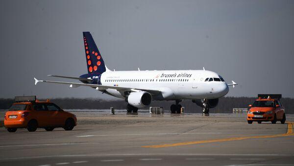 Самолет авиакомпании Brussels Airlines в аэропорту Домодедово. Архивное фото