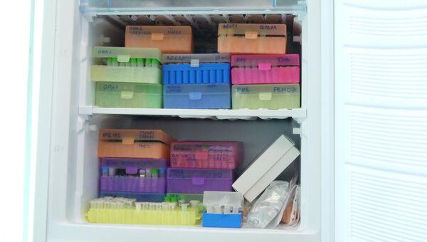 Образцы ДНК в морозильной камере