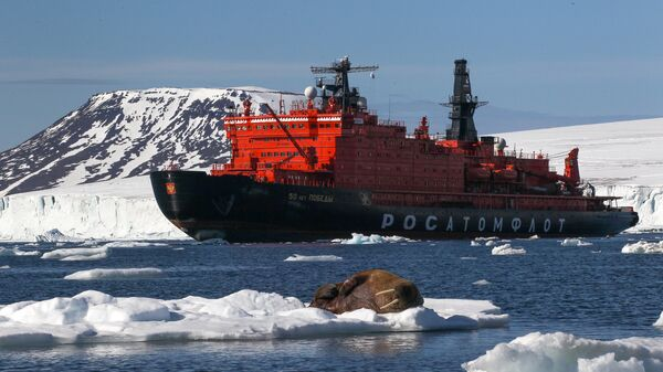 Морж на льдине у берегов одного из островов архипелага Земля Франца-Иосифа. Архивное фото