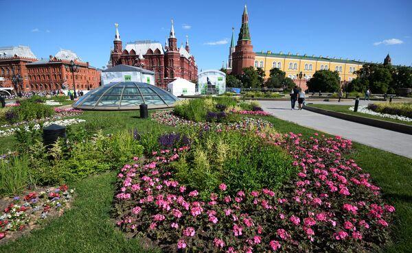 Цветник на Манежной площадь в Москве