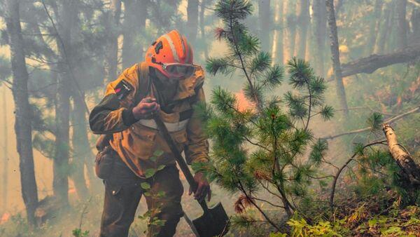 Авиапожарный парашютно-десантной пожарной службы Федеральной Авиалесоохраны во время тушения лесного пожара
