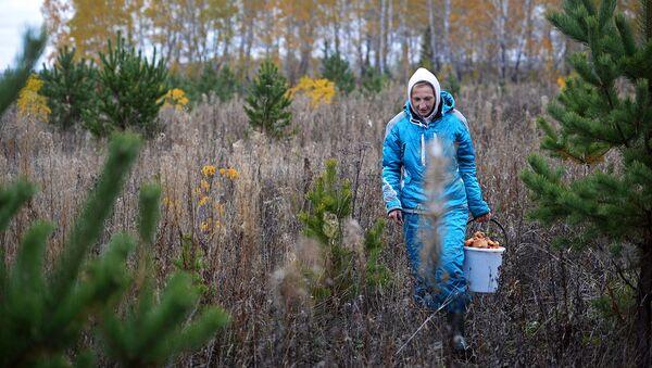 Найти грибную поляну по душе можно практически в любом регионе страны