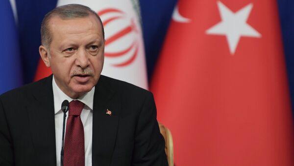 Президент Турции Реджеп Тайип Эрдоган на пресс-конференции по итогам трехсторонней встречи с президентом РФ Владимиром Путиным и президентом Ирана Хасаном Рухани в Тегеране. 7 сентября 2018