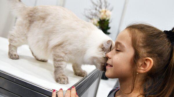 Защитить аллергика: ученые разрабатывают вакцину против аллергии на кошек