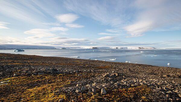 Россия и Финляндия намерены сотрудничать в сфере улучшения экологии Арктики
