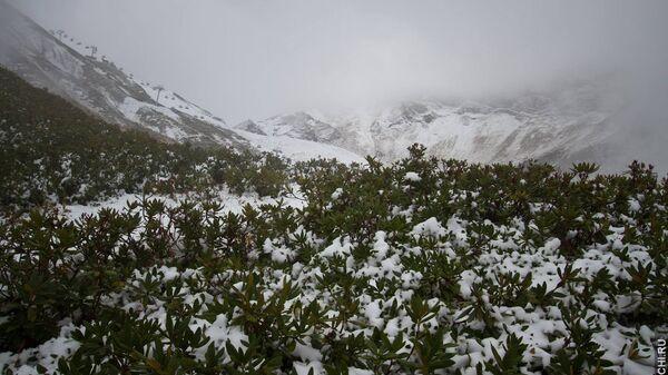 Первый снег в горах Сочи