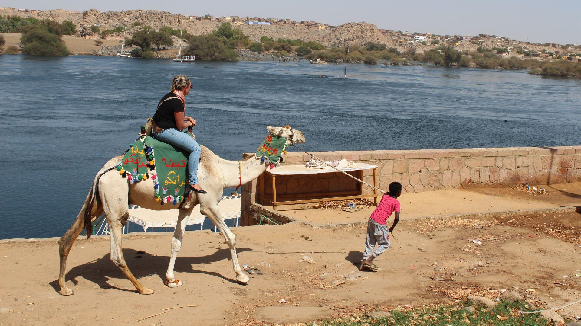Местный житель катает туристку вдоль Нила на верблюде - РИА Новости, 1920, 05.09.2020