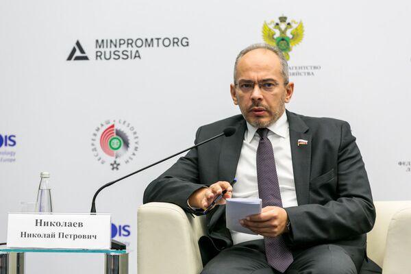 Николай Николаев, Председатель Комитета по природопользованию, собственности и земельным отношениям Государственной думы РФ