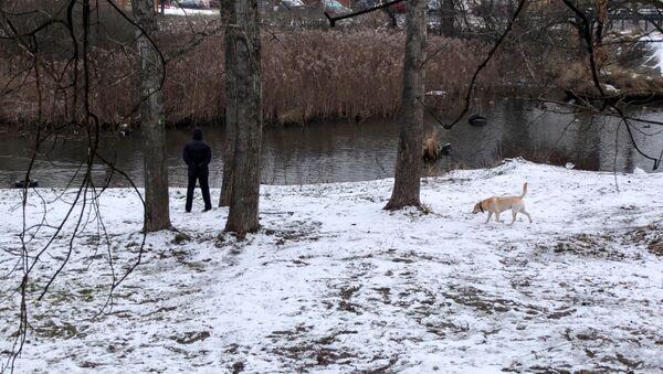 Мужчина гуляет с собакой на берегу Яузы. Архивное фото