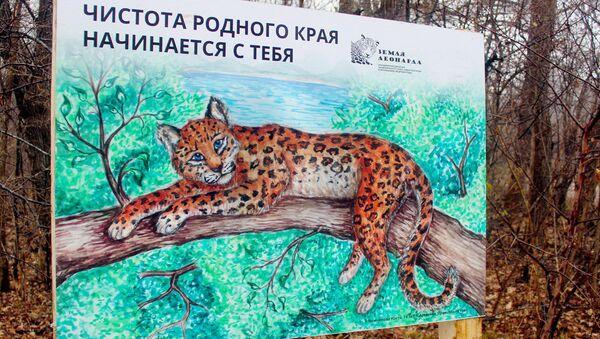 На Земле леопарда пройдет субботник