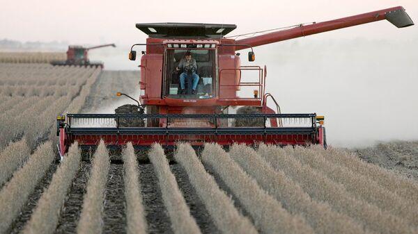 Американские фермеры собирают урожай соевых бобов в штате Айова
