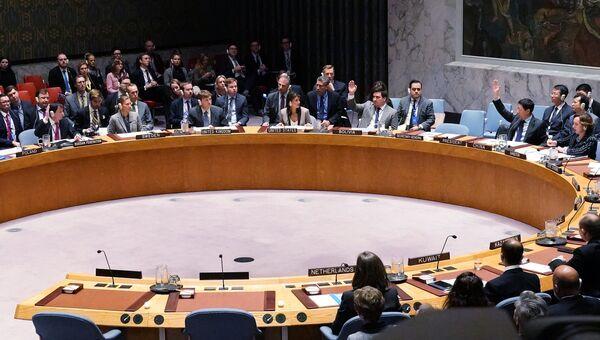 Голосование по ситуации в Керченском проливе в Совбезе ООН. 26 ноября 2018