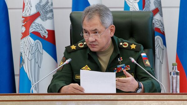 Министр обороны РФ Сергей Шойгу на заседании коллегии Министерства обороны РФ в Москве. 28 ноября 2018