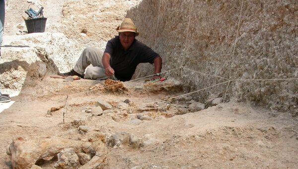 Мохамед Сахнуни проводит раскопки на северо-востоке Алжира