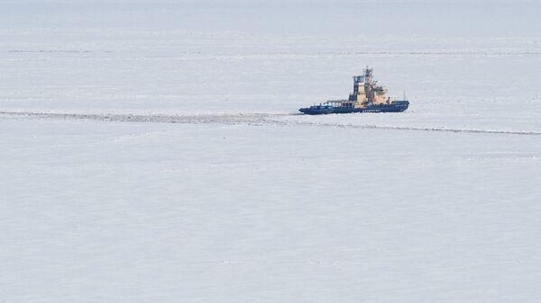 Ледокол в Карском море. Архивное фото