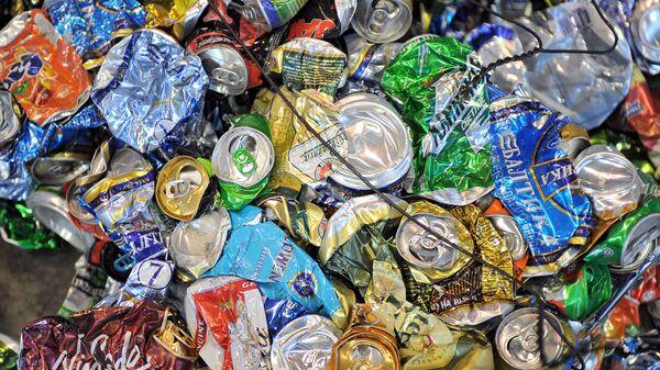 ОНФ предлагает создать ресурс для контроля за размещением мусорных объектов