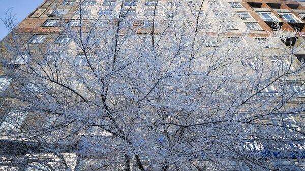 Морозы в Сибири