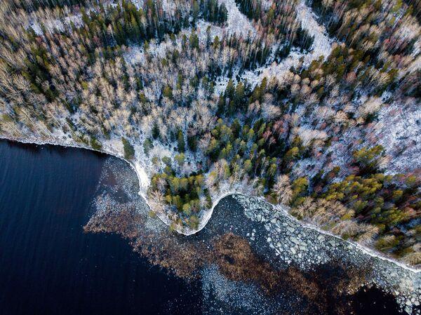 Побережье Онежского озера в Прионежском районе Республики Карелия