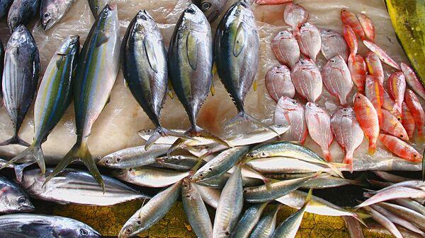 Рыбный рынок в Тайване