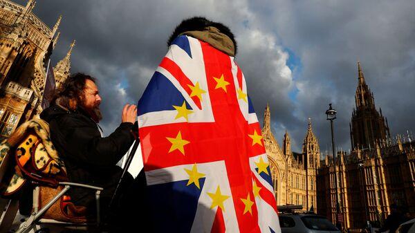 Противники Brexit у Вестминстерского дворца в Лондоне. 12 декабря 2018