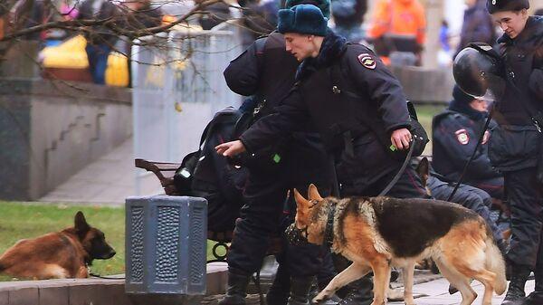 Сотрудники полиции со служебными собаками