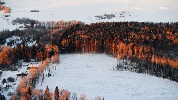 Площадь ООПТ в Подмосковье превысила 200 тысяч гектаров