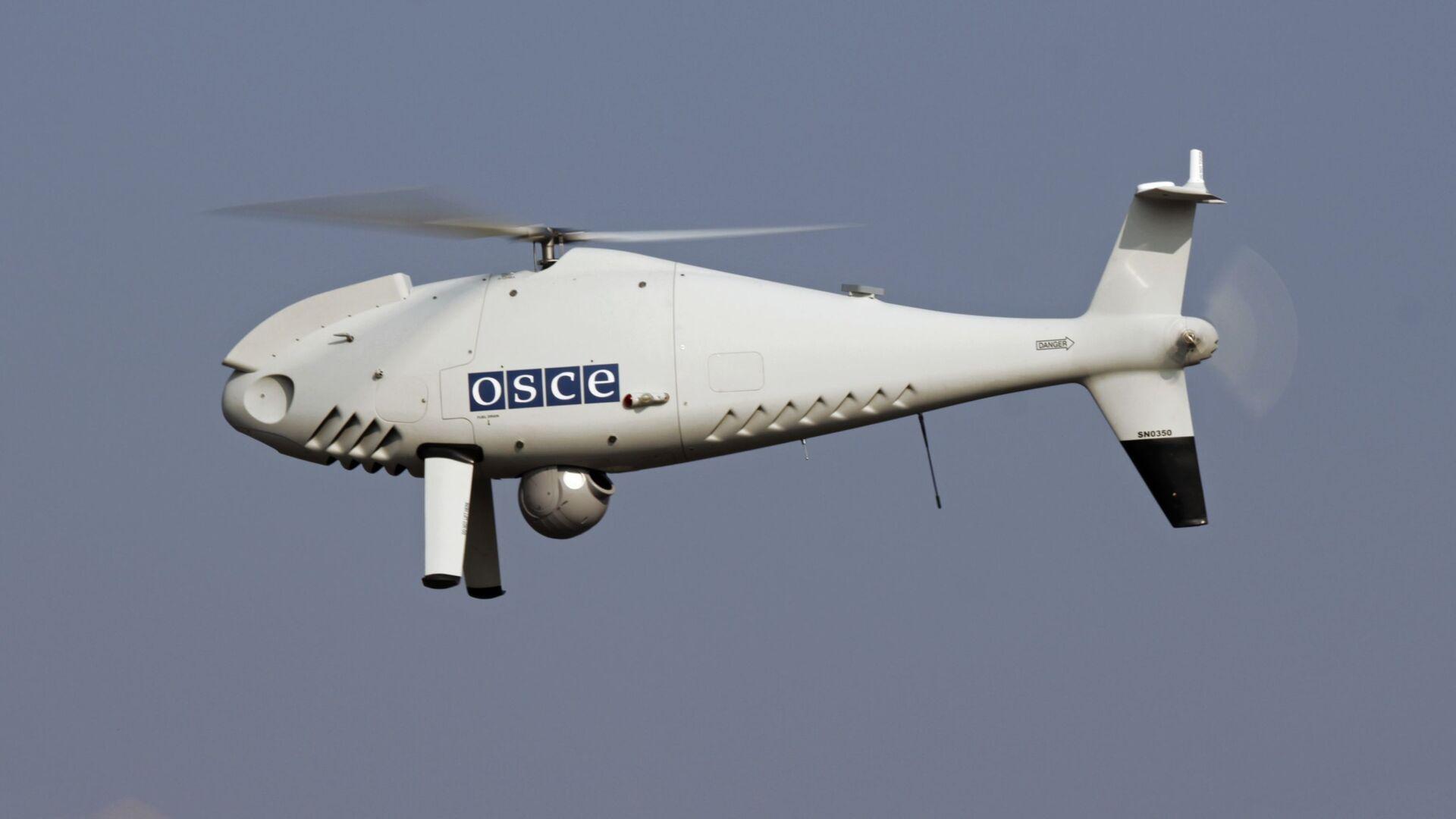 Беспилотный летательный аппарат дальнего радиуса действия Специальной Мониторинговой Миссии ОБСЕ на Украине - РИА Новости, 1920, 07.05.2021