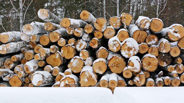 Предприятие лесопромышленного комплекса