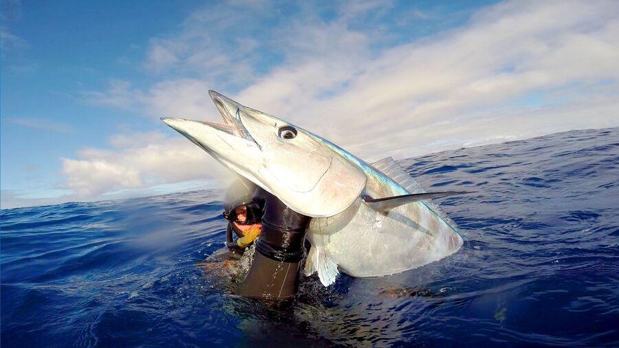 Рыбалка на Азорских островах