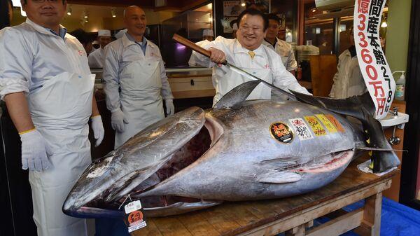 Президент сети ресторанов Суси Дзаммай с 278-килограммовым тунцом, проданным за 3,1 миллиона долларов на торгах на рынке Тоёсу в Токио. 5 января 2018