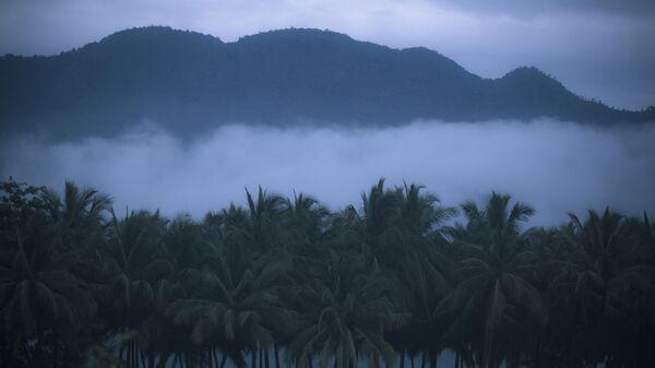Туман в Муннаре, штат Керала, Индия
