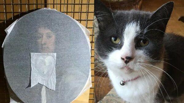 Унее лапки: кошка английского искусствоведа уничтожила редкостный портрет XVII века