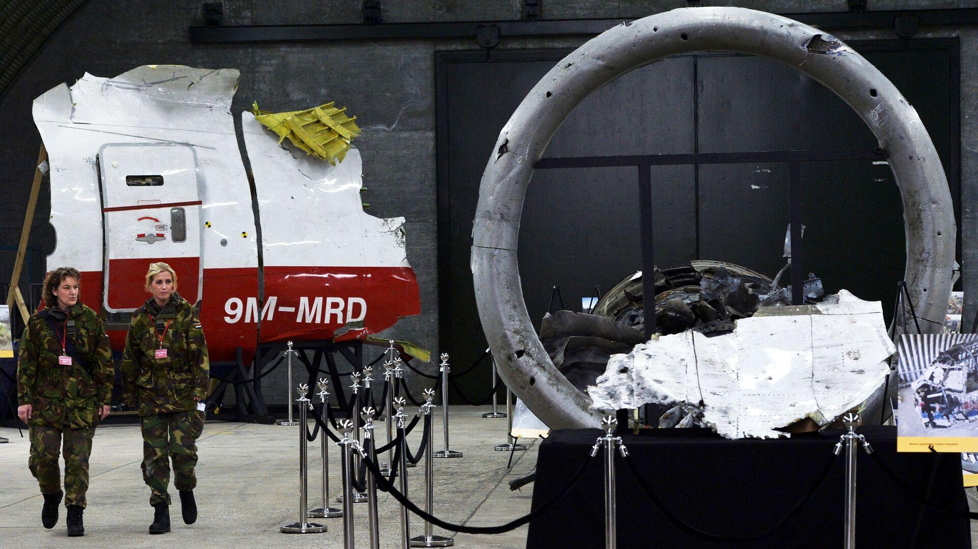 Представление доклада об обстоятельствах крушения лайнера Boeing 777 Malaysia Airlines (рейс MH17) в Нидерландах - РИА Новости, 1920, 08.06.2021