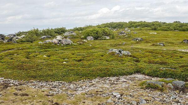 Каменный лабиринт на Большом Заяцком острове на Соловках