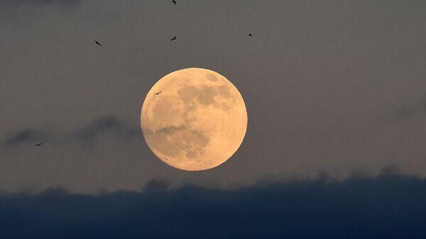 Лунное затмение в небе над  Уэльсом, Великобритания