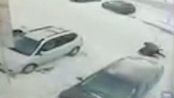 Скриншот видео нападения на женщину в подмосковном Щелкове