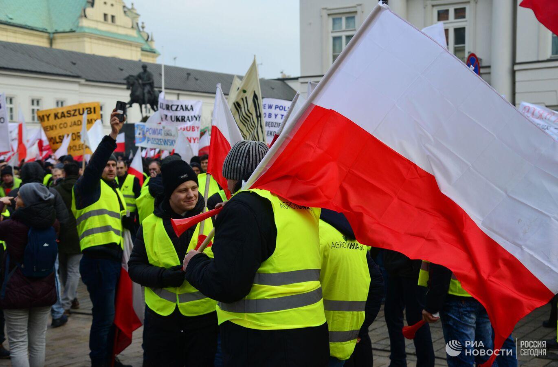 В Варшаве протестующие фермеры рассыпали на дороге яблоки и положили на трамвайные пути свинью