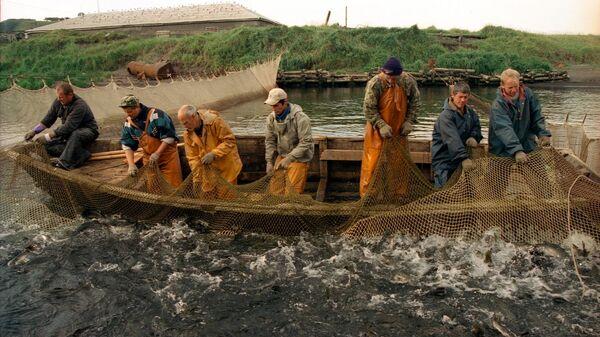 Рыбаки ЗАО Гидрострой во время ловли рыбы на острове Итуруп
