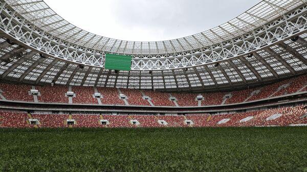 Поле на Большой спортивной арене Лужники в Москве