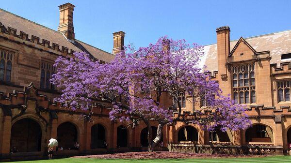 Сиднейский университет