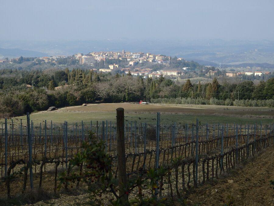 Тоскана. Вид на город Монтаионе (рядом с Сан-Вивальдо)