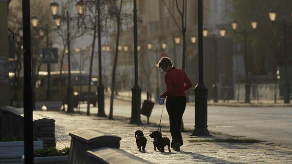 Женщина гуляет с собаками на одной из улиц в центре Астрахани
