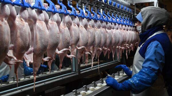Сотрудник в разделочном цехе на птицефабрике