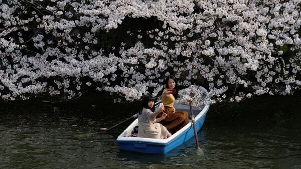 Девушки фотографируются с сакурой в Токио, Япония
