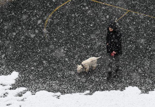 Девушка гуляет с собакой в Мытищах