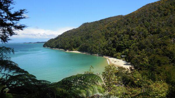 Национальный парк Абель-Тасман в Новой Зеландии