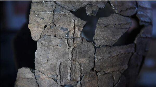 Изображение человека на керамическом сосуде 5-3 веков до н.э со стоянки Высокогорская в Енисейском районе Красноярского края